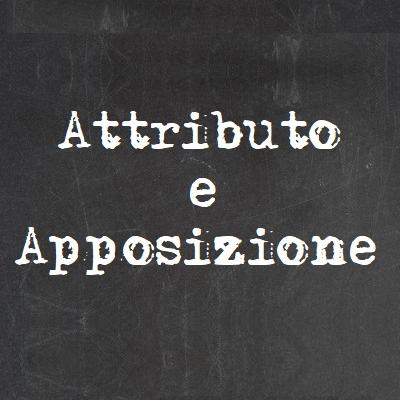 attributo e apposizione