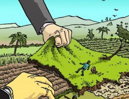 Land Grabbing e globalizzazione